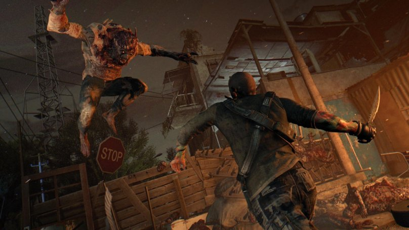 Dying Light The Following флаги